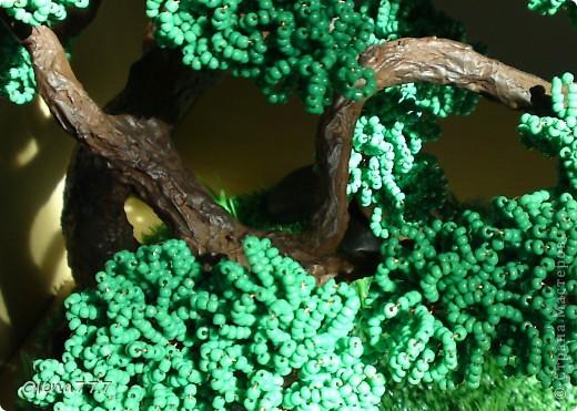 Доброго дня и ночи, жители Страны Мастеров! Это моё третье дерево. Теперь и у меня есть бонсай! Ну, о работе судить вам. Буду благодарна за любые комментарии. Высота дерева 21см. фото 3