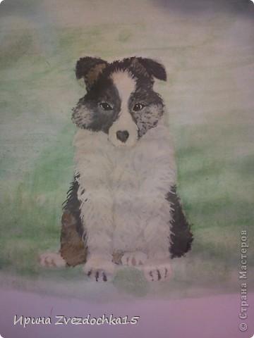 Срисовывала с картинки в интернете. Честно говоря я не очень красками рисую. По душе простой карандаш. Но решила попробовать и срисовать что-нибудь интересное) фото 1
