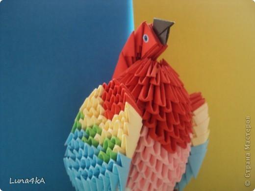 Попугая делала на конкурс птиц. Он занял первое место. фото 2