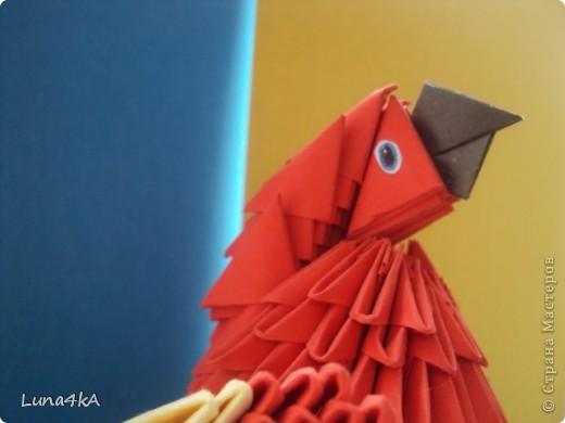 Попугая делала на конкурс птиц. Он занял первое место. фото 3