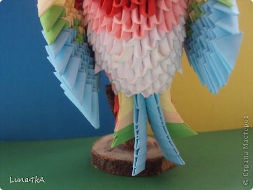Попугая делала на конкурс птиц. Он занял первое место. фото 5