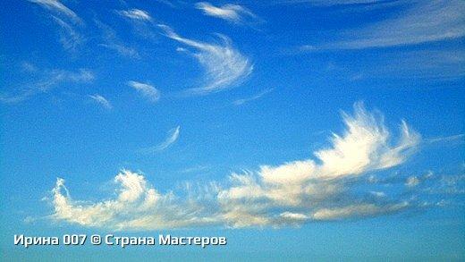 Не могла удержаться, чтобы не сфоткать. Меня облака и голубизна неба умилили. Позитивная, умиротворяющая картина... Надеюсь, приятного просмотра! фото 4