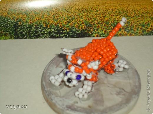Собачка Рыжик фото 3