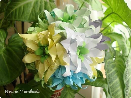 Собрались у меня два цветика- семицветика. Один -  кусудама Romantic Татьяны Высочиной          ( http://pics.livejournal.com/tigreshenka/gallery/0001615k), второй - Пассифлора Екатерины Лукашевой ( http://kusudama.me/#/Passiflora/Passiflora-curly/pass6).. В кусудаме   Romantic я прибавила в цветочках серединки - это не вывернутый модуль супершар.  фото 3