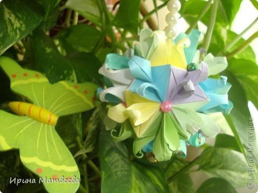Собрались у меня два цветика- семицветика. Один -  кусудама Romantic Татьяны Высочиной          ( http://pics.livejournal.com/tigreshenka/gallery/0001615k), второй - Пассифлора Екатерины Лукашевой ( http://kusudama.me/#/Passiflora/Passiflora-curly/pass6).. В кусудаме   Romantic я прибавила в цветочках серединки - это не вывернутый модуль супершар.  фото 4
