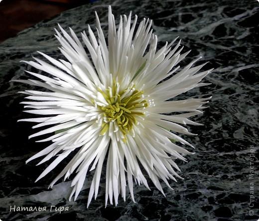 Игольчатая хризантема из фоамирана