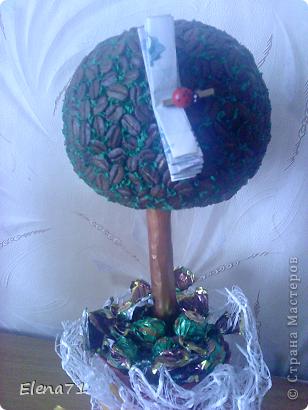 Кофейное деревце с конфетками в горшочке. фото 2