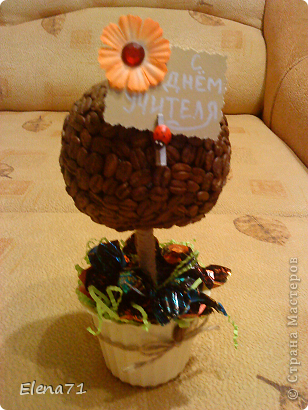 Кофейное деревце с конфетками в горшочке. фото 3