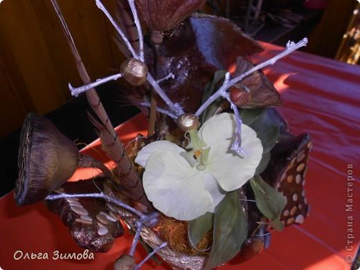 """Вот и ещё одна старая коряга пригодилась... Сделала на подарок вот такую композицию. В закромах давно пылилась коряга, напоминавшая птицу.  После окончательной обработки я декорировала её морскими камушками. Корзиночку с цветами подобрала и сделала  по размеру отверстия в коряге. Корзиночка съемная. Саму""""птицу"""" можно ещё использовать и как кашпо под цветы. Что получилось смотрите сами. Подарок вроде понравился.. фото 6"""