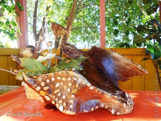 """Вот и ещё одна старая коряга пригодилась... Сделала на подарок вот такую композицию. В закромах давно пылилась коряга, напоминавшая птицу.  После окончательной обработки я декорировала её морскими камушками. Корзиночку с цветами подобрала и сделала  по размеру отверстия в коряге. Корзиночка съемная. Саму""""птицу"""" можно ещё использовать и как кашпо под цветы. Что получилось смотрите сами. Подарок вроде понравился.. фото 9"""
