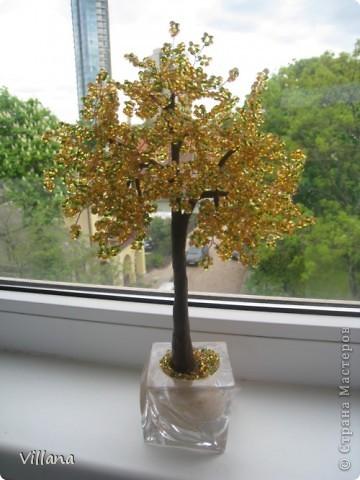 Золотое деревце)))) фото 1