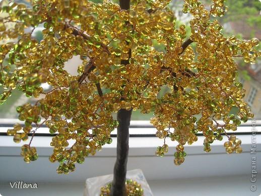 Золотое деревце)))) фото 2