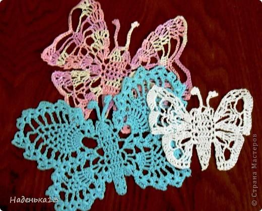 Семейство бабочек фото 1