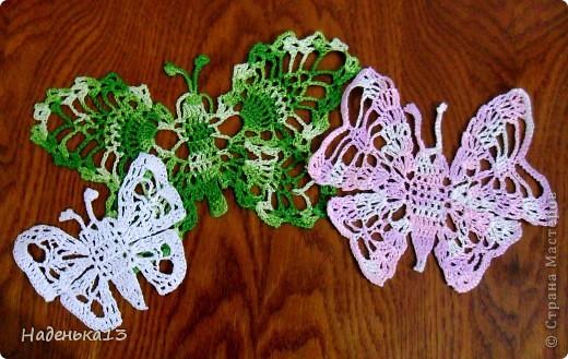 Семейство бабочек фото 2