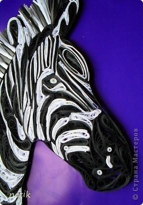 Еще раз здравствуйте. Вот такую зебру я сотворила по рисунку найденному на просторах интернета. Долго подбирала ей фон, прикладывала к ней веточки и травку.  Даже хотела просто присобачить ее за уши к стене - тоже не плохо смотрелось. Но, потом сжалилась и поселила животинку в рамочку. фото 2