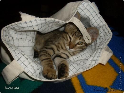 Очень хотелось себе эко-сумку. И совместными усилиями с мамой пошилась такая сумочка. На фото попала филейная часть моего помощника) фото 5