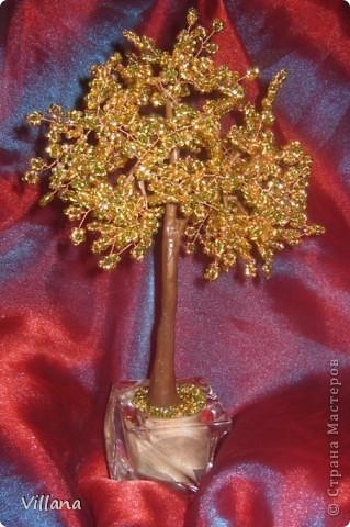 Золотое деревце)))) фото 4