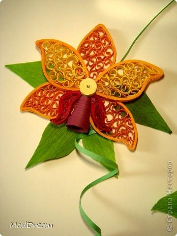 Доброго времени суток, Мастера и Мастерицы!) Захотелось мне как-то раз создать орхидею, а поискав, обнаружила, что мне нравится мне сразу несколько. И решила сделать 5 небольших панно. Получилась своеобразная выставка орхидей ^___^ Наконец-то в промежутке между учебой и сессиями появилось время, чтобы дооформить картинки. З.ы. Идеи навеяны Страной и не только) Итак:  1. В бордовых тонах (http://quillingmesoftlee.blogspot.com/2011/09/quilled-orchids.html) фото 3