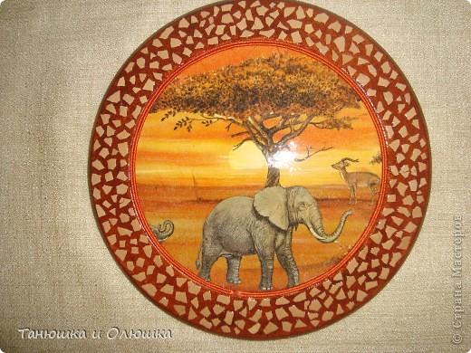 Вот такая Африка у меня получилась фото 2