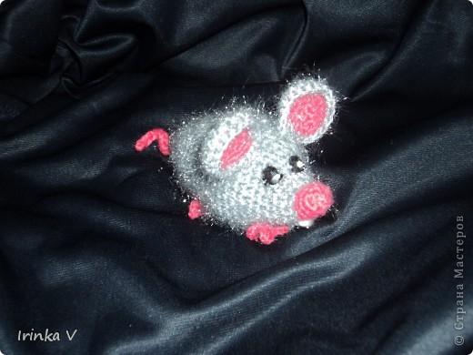 просто ма-аленькая  мышка фото 2