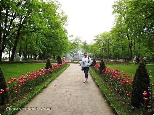 Здравствуйте, рада приветствовать у себя на страничке всех своих гостей! Хочу поделится с вами своей радостью. Я очень мечтала побывать в Санкт-Петербурге и вот в конце мая 2012 года моя мечта сбылась! Мой тур был автобусный, и вот мы выезжаем из Киева. В добрый путь! фото 16
