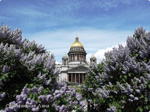 Здравствуйте, рада приветствовать у себя на страничке всех своих гостей! Хочу поделится с вами своей радостью. Я очень мечтала побывать в Санкт-Петербурге и вот в конце мая 2012 года моя мечта сбылась! Мой тур был автобусный, и вот мы выезжаем из Киева. В добрый путь! фото 8