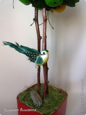 Всем привет!!!!! Хочу показать вам очередное фруктовое деревце (сделано на заказ) и солнечный велосипедик! фото 4
