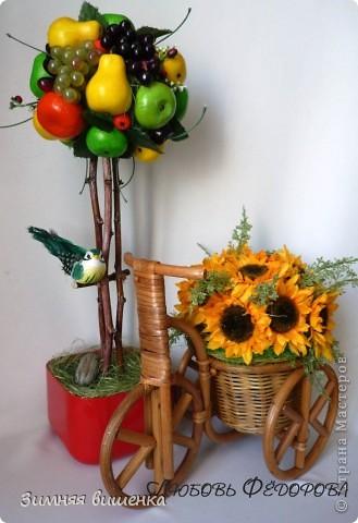 Всем привет!!!!! Хочу показать вам очередное фруктовое деревце (сделано на заказ) и солнечный велосипедик! фото 1