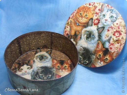 """Вторая """" ласточка"""" , точнее наверное сказать не ласточка , а лапочки.............Такие вот Ситцевые котята , забрались к бабушке в шкатулку для рукодельностей с ситцевыми отрезочками... фото 2"""
