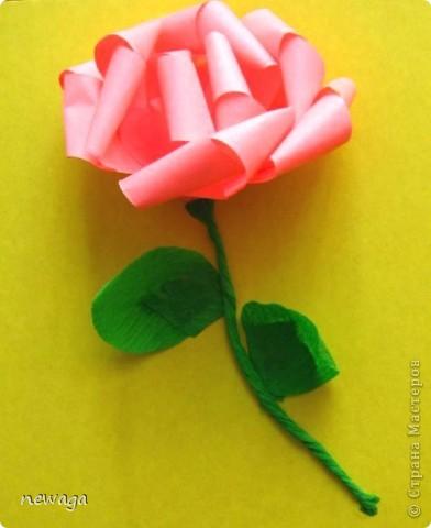 Роза из бумажной полосы - моя авторская разработка. Мастер-класс снимала на занятии с группой детей в городском лагере. На фотографиях работы детей фото 1