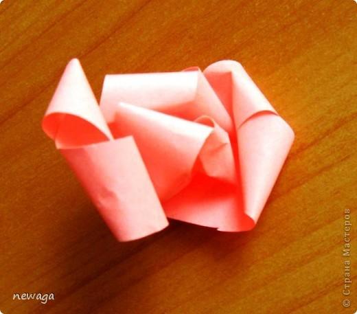 Роза из бумажной полосы - моя авторская разработка. Мастер-класс снимала на занятии с группой детей в городском лагере. На фотографиях работы детей фото 5