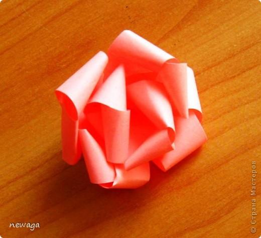 Роза из бумажной полосы - моя авторская разработка. Мастер-класс снимала на занятии с группой детей в городском лагере. На фотографиях работы детей фото 6