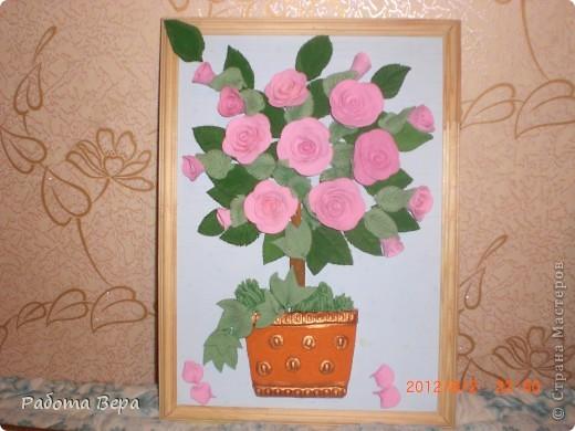 Розы. фото 7