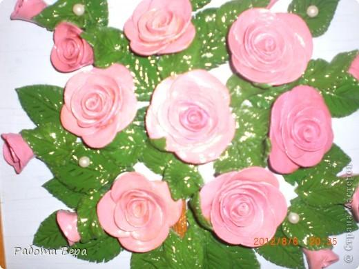Розы. фото 6