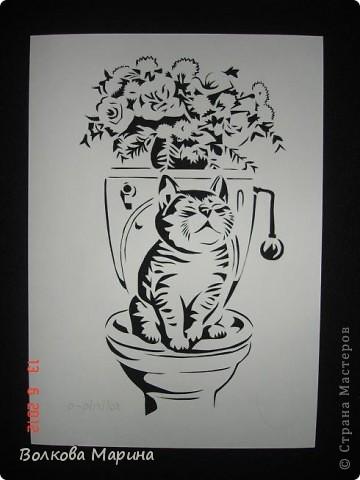Давно хотела повторить работу o-olnika. Так мне понравился её котик! Такой забавный! И вот он перед Вами! фото 1