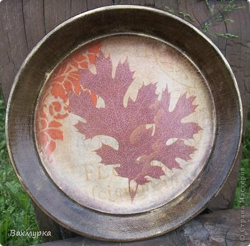 Тарелка d 23 см. В работе использованы акрил. краски 4-5 цветов, салфетка, лак акрил. фото 6