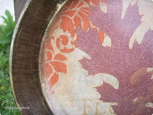 Тарелка d 23 см. В работе использованы акрил. краски 4-5 цветов, салфетка, лак акрил. фото 7