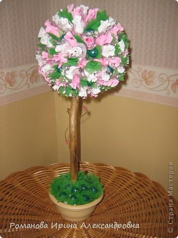 Конфетное дерево фото 2