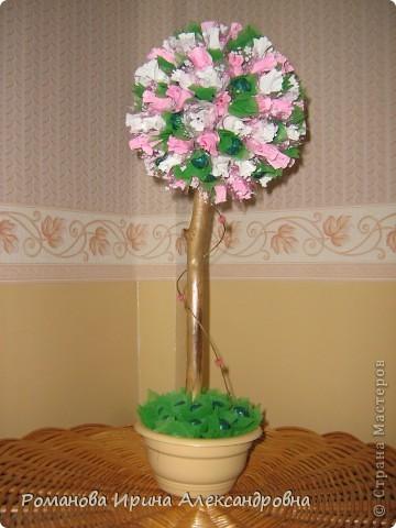 Конфетное дерево фото 1