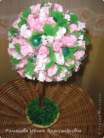 Конфетное дерево фото 4