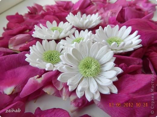 просто  цветы!!!(ХРИЗАНТЭМЫ ) фото 3