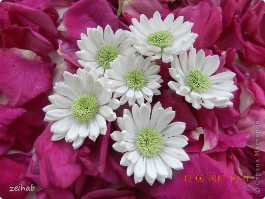 просто  цветы!!!(ХРИЗАНТЭМЫ ) фото 11
