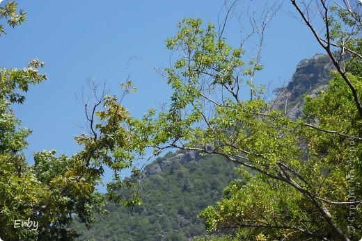"""В Турции очень популярны места отдыха на горных речках. Недавно побывали в одном из них  под названием Дым-чай, недалеко от Алании. На небольшой горной речке (что и есть по-турецки """"чай"""") располагается несколько ресторанов на воде. Они представляют собой плотики под тентом с подушками и столиком посередине. Как правило, есть водные горки для желающих купаться  и надувные шары, забираясь в которые, можно передвигаться по воде, но вода довольно холодная. К подушкам тоже приходится приспосабливаться, так как нам привычным есть за столом тяжело долго сидеть на корточках или по-турецки. Но ощущения замечательные: свежий воздух, запах реки, горы вокруг и вкусная еда.  фото 3"""