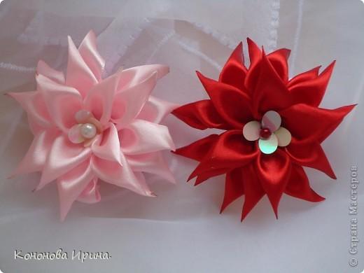 Еще цветочки. фото 1