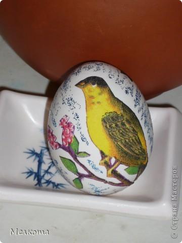 Это было мое первое знакомство с декупажем. Для начала решила отдекупажить то, чего много и что не жалко - пустую скорлупу от яиц. В качестве фона детские гелевые блестки.  Скромно, но симпатично.  Очень трудно было вырезать каждую веточку. фото 2