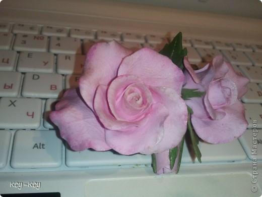 Заколочки с цветами.... и ягодками..... фото 1