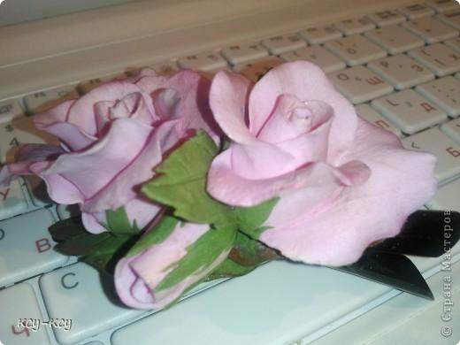 Заколочки с цветами.... и ягодками..... фото 3