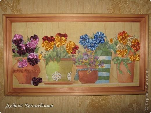 Ботаники называют анютины глазки фиалкой трехцветной. На Руси, по одной из легенд, в это растение была превращена некая Анюта за своё чрезмерное любопытство. На языке символов подаренный букет этих цветов символизирует признание в верности. фото 1