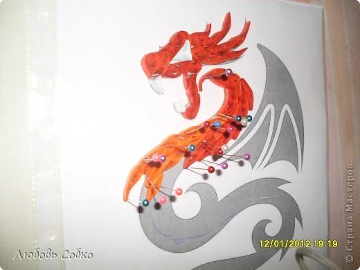 Год дракона фото 2