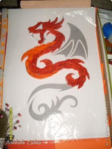 Год дракона фото 3